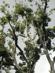 公園の木に不思議なパフォーマンス?